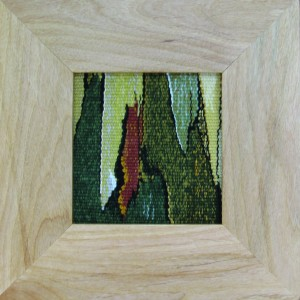 Textures in bark