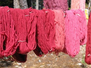 Dyeing with Cochineal