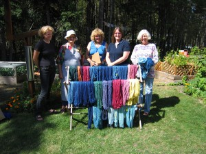 The students and their results of dyeing